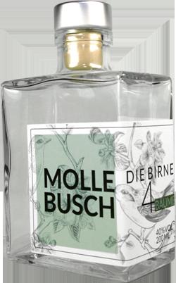 Flasche Mollebusch